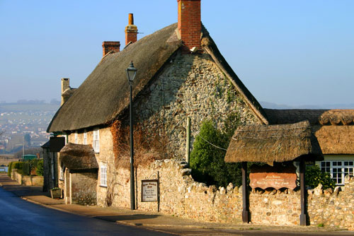 Insure Thatched Pubs